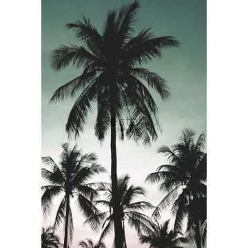fototapet palmer bensingrönt från ESTA home