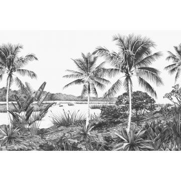 fototapet tropiskt landskap med palmer svart och vitt från ESTA home