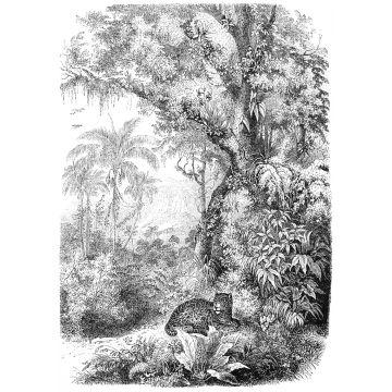 fototapet djungel svart och vitt från ESTA home