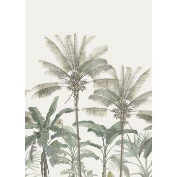 fototapet palmer ljusbeige och grågrönt från ESTA home