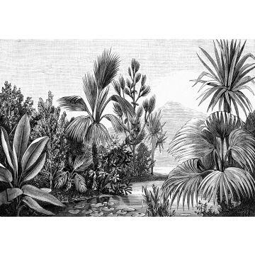 fototapet tropiskt landskap svart och vitt från ESTA home