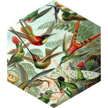 wallsticker fåglar tropiskt djungelgrönt från ESTA home
