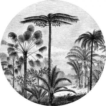 självhäftande rund tapet tropiskt landskap med palmer svart och vitt från ESTA home