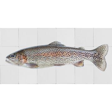 wallsticker fisk varmt grått och laxrosa från ESTA home