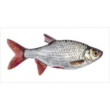 wallsticker fisk grått och rött från ESTA home