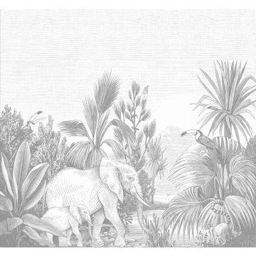 fototapet djungel grått från ESTA home