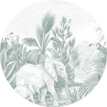 självhäftande rund tapet djungel grönt från ESTA home